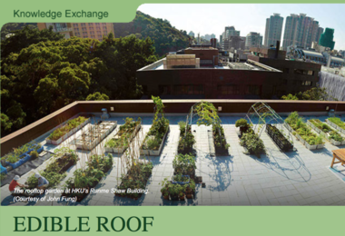 Edible Roof