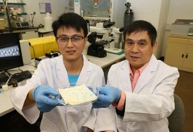 HKU research team develops economical new liquid-repellent material