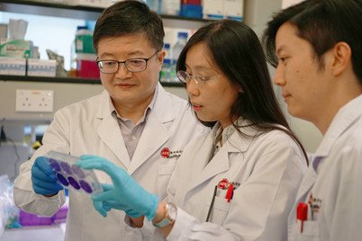 (From left) Professor Zhiwei Chen discussing with Post-doctoral Fellows, Dr Ada LY Yim and Dr Zhiwu Tan, in the lab