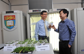Engineering Plants for a Brighter Future