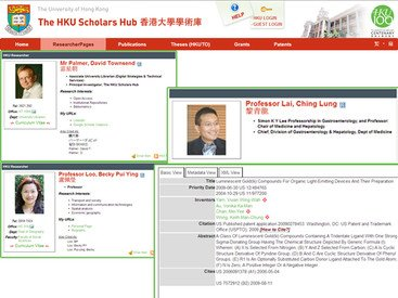 Researcher pages at the HKU Scholars Hub