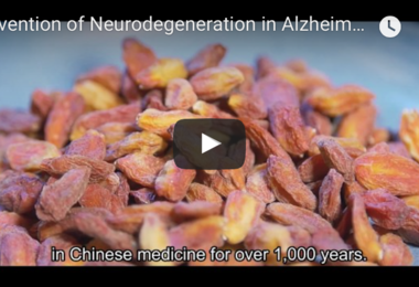 Prevention of Ageing-associated Neurodegeneration in Alzheimer's Disease and Glaucoma with a Wolfberry Extract