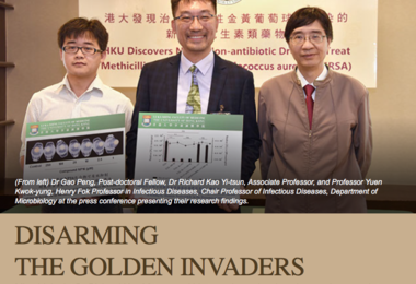 Disarming the Golden Invaders