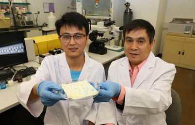 Professor Liqiu Wang (right) and Mr Pingan Zhu (left) showcase the liquid-repellent surface they innovated