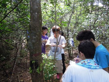 A team of secondary school students practicing tree survey in the ForestGEO plot under the supervision of the research team